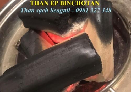 Than ép Bichotan