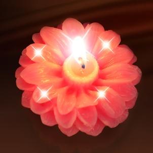 Nến hoa hướng dương