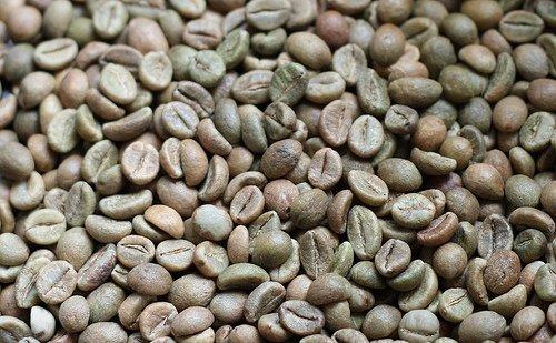 Cà phê Robusta loại 2, sàng 13