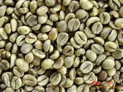 Cà phê Robusta loại 1, sàng 16