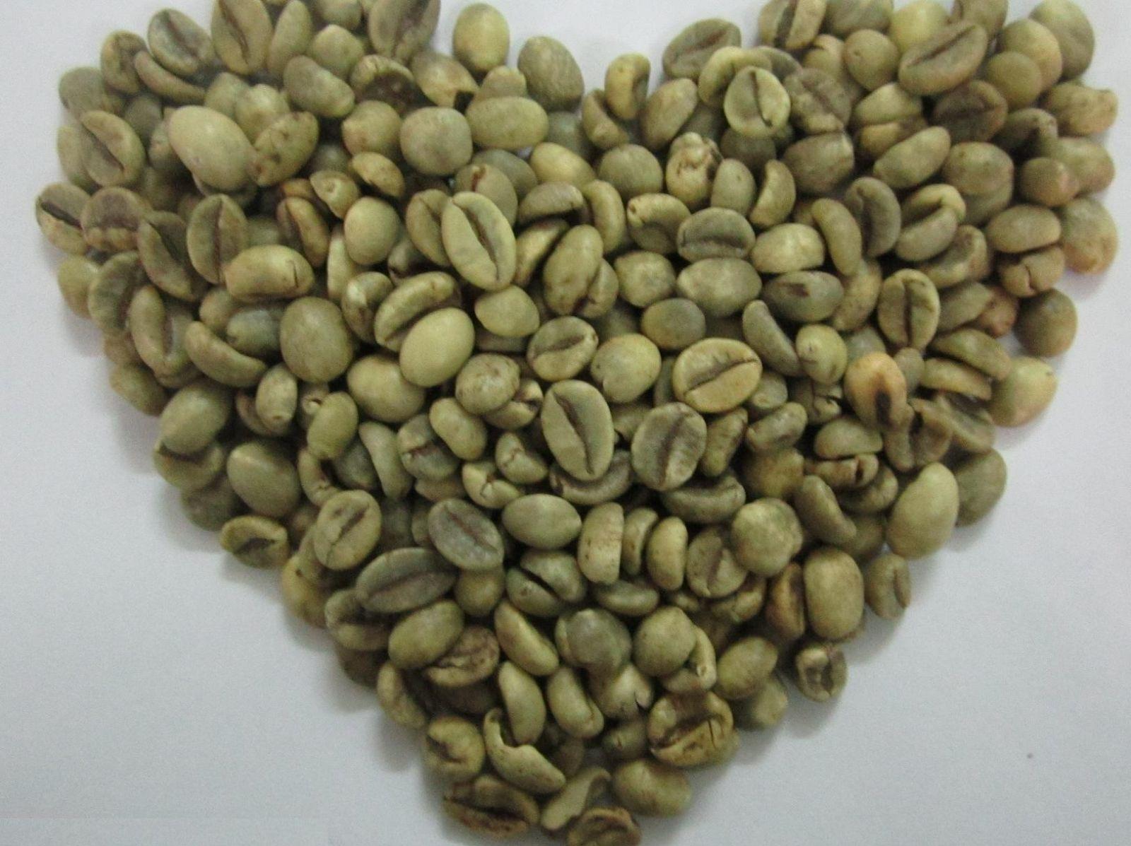 Cà phê Robusta loại 1, sàng 18