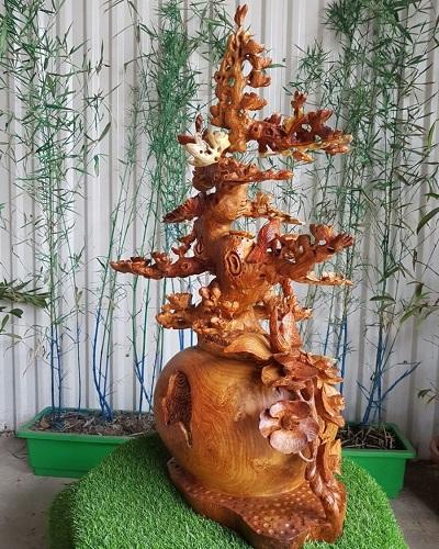 Bình Bonsai gỗ