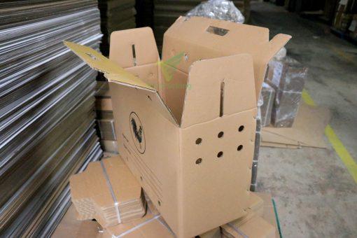 Thùng carton đựng gà