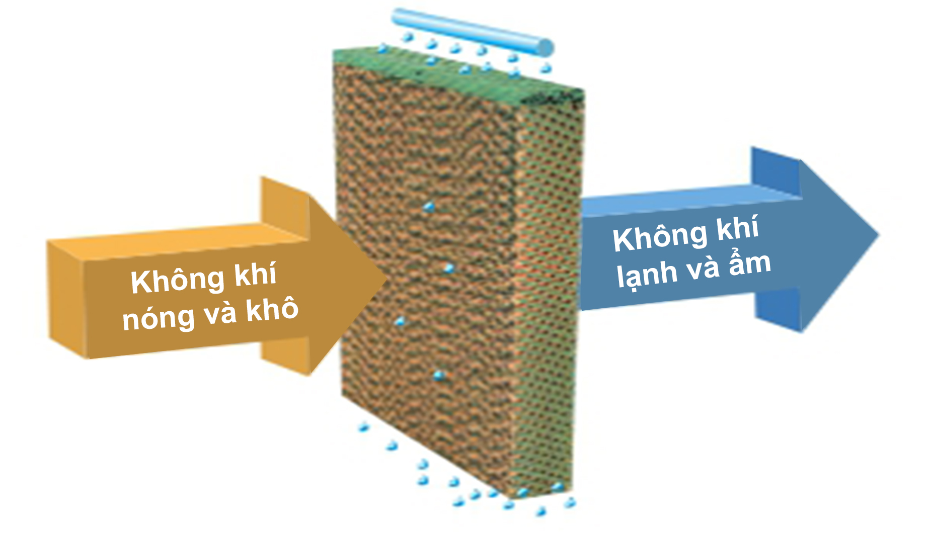 Hệ thống cooling pad