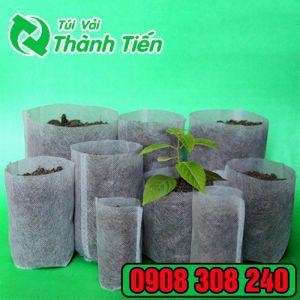 Túi vải không dệt trồng cây