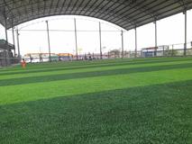 Mái che sân bóng đá