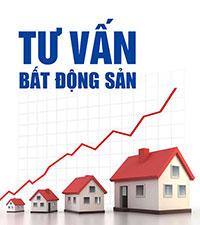 Tư vấn đầu tư bất động sản