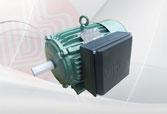Động cơ điện 1 FA