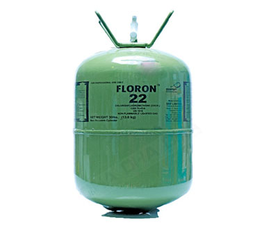 Gas lạnh Floron R22