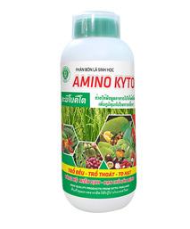 Phân bón lá Amino Kyto