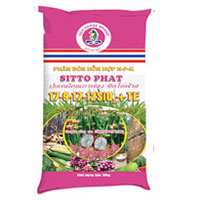 Sitto phat 17 9 17 12sio2 te