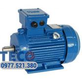 Motor Teco IE2 tiết kiệm điện