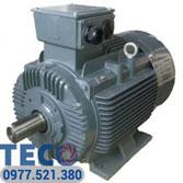 Motor chân đế Teco tiêu chuẩn IEC