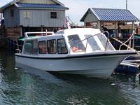 Tàu chở khách 11m33 cabin