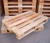 Pallet KT 4 chiều nâng 1200 x 800 x 145mm