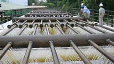 Khảo sát mẫu nước xả thải