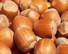 Hương hạt dẻ