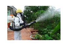 Dịch vụ diệt côn trùng