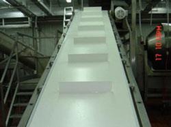 Băng tải nhựa ngành thực phẩm