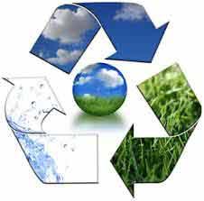 Báo cáo môi trường