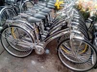 Cho thuê xe đạp du lịch