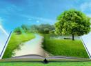 Tư vấn báo cáo giám sát môi trường