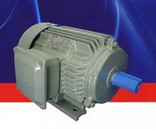 Động cơ điện Teco EFF2