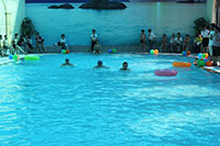 Bể bơi trương THCS FPT