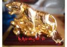 Hổ mạ vàng