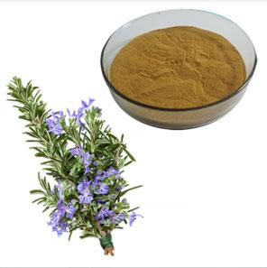 Bột hương thảo