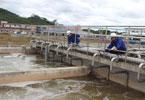 Xử lý nước thải cho nhà máy