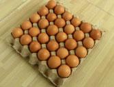 Vỉ đựng trứng