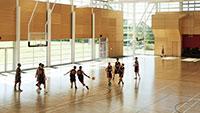 Sàn gỗ thể thao