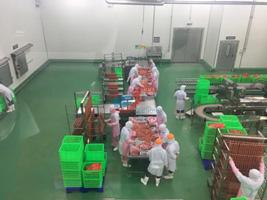 Nhà máy thực phẩm CP
