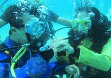 Lặn quay phim chụp hình dưới nước