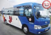 Cho thuê xe Huyndai County 29 chỗ