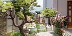 Thiết kế sân vườn cá Koi