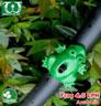 Béc tưới cây nhỏ giọt Frog