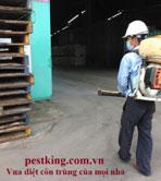 Khử trùng pallet gỗ xuất khẩu