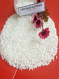 Gạo nếp hạt dài