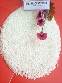 Gạo thơm 5451