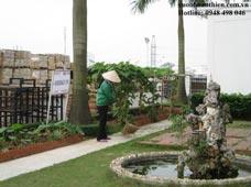 Chăm sóc khu sân vườn