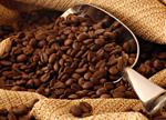 Hương cà phê