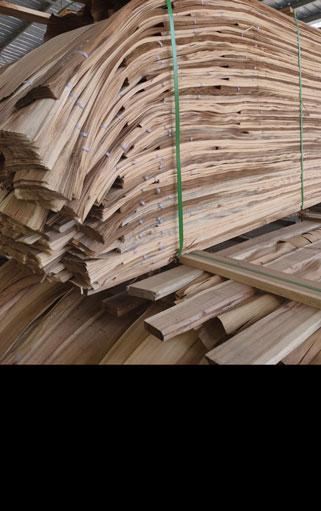 Ván lạng gỗ tràm