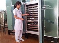 Tủ sấy dược liệu bằng hơi nước