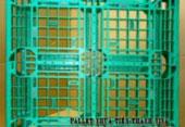 Pallet Nhựa 1100x1100x150mm xanh lá cây