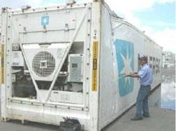 Giám định hàng Container