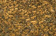 Granite vàng bướm khổ lớn