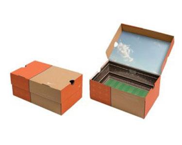 Bao bì hộp giấy