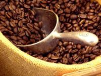 Nông sản cà phê